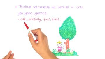 Türkçenin Ses Özellikleri