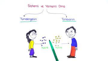 Bilim ve Bilimsel Bilginin Özellikleri