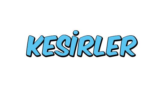 Kesirler