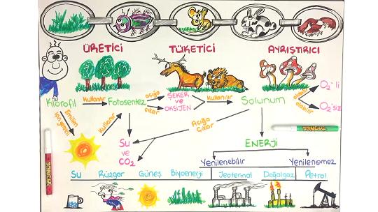 Canlılar ve Enerji İlişkileri Ünite Özeti