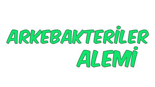 Arkebakteriler Alemi