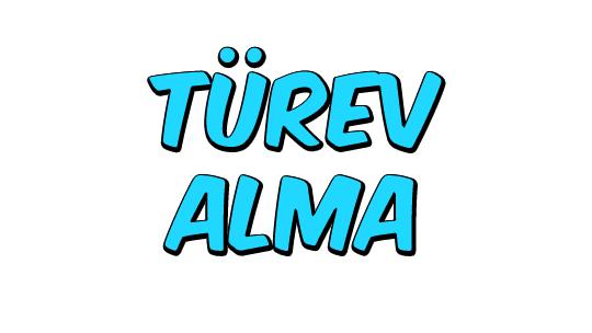 Türev Alma