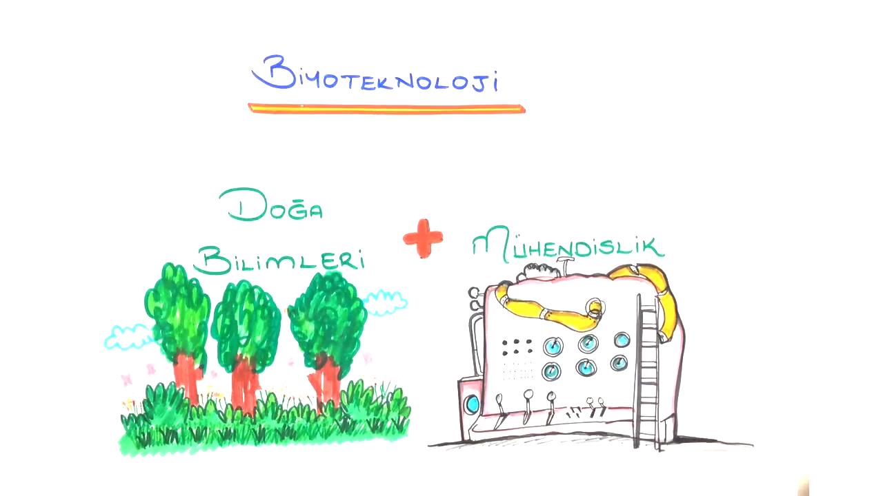 Biyoteknoloji konusu Biyoteknoloji eğitimi