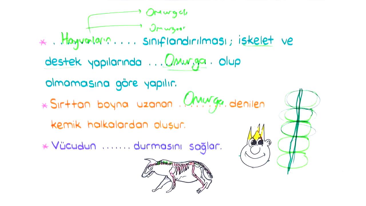 Canlılar ve Yaşam konusu Hayvanlar eğitimi