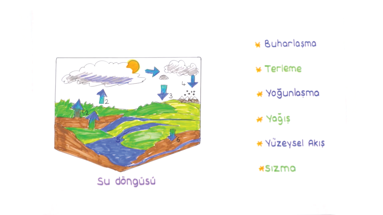 Dünya'da Su Kaynakları konusu Deniz ve Okyanuslar eğitimi