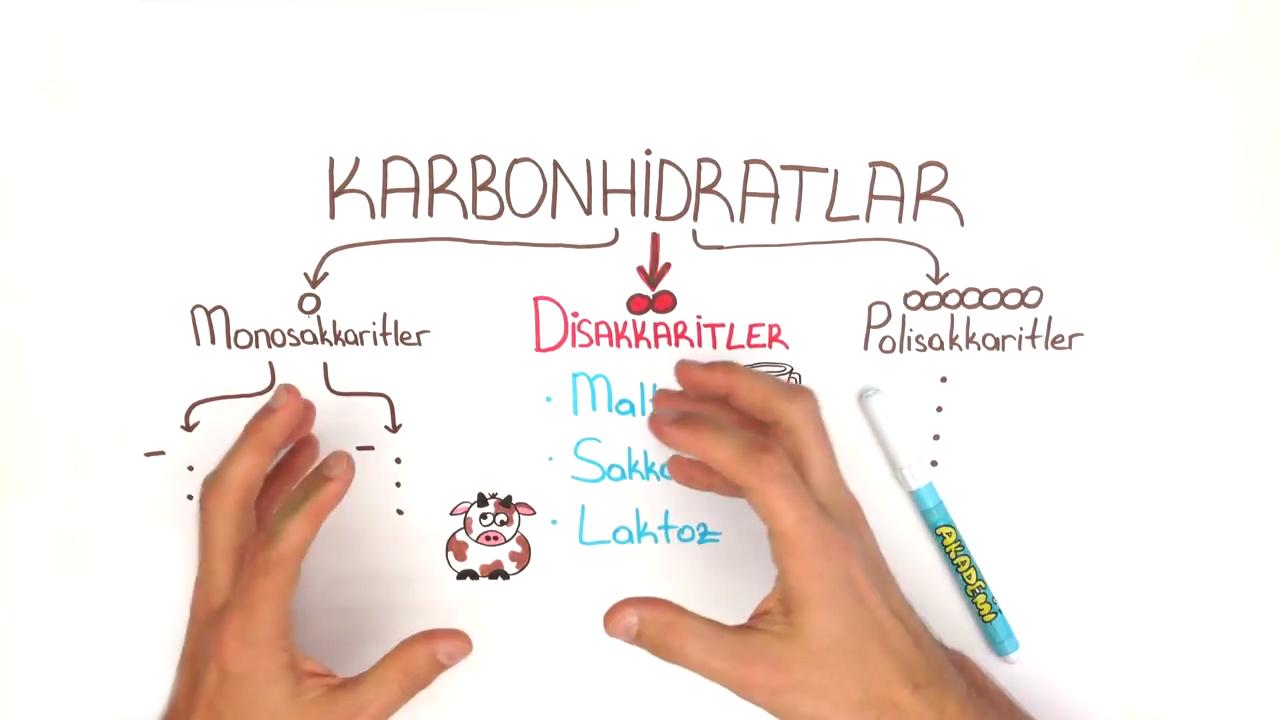 Karbonhidratlar konusu Disakkaritler eğitimi