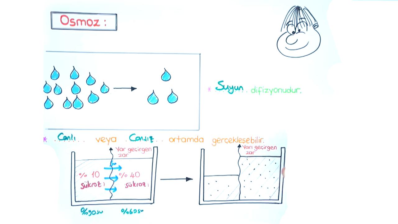 Hücre Zarı konusu Hücre Zarından Madde Geçişleri II eğitimi