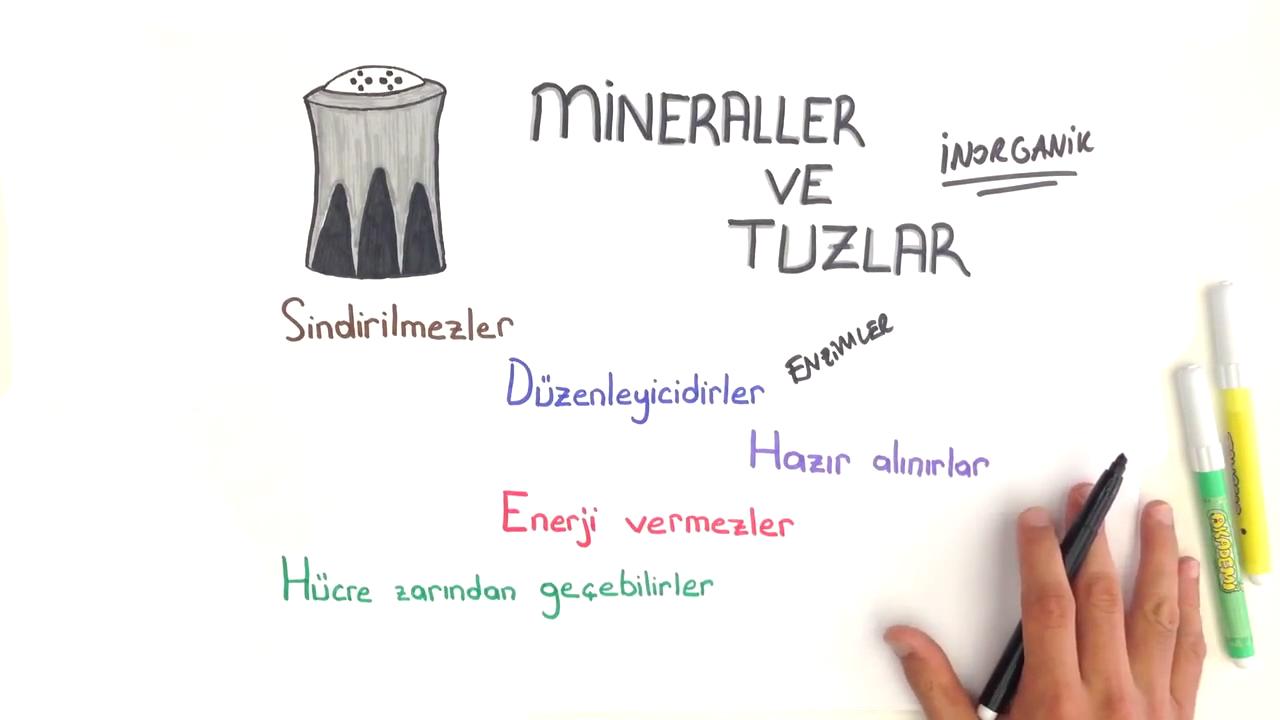İnorganik Bileşikler konusu Mineraller ve Tuzlar eğitimi