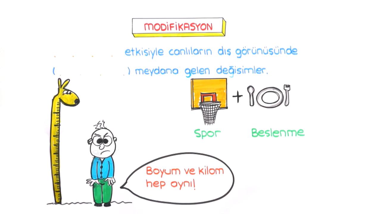 DNA ve Genetik Kod konusu Modifikasyon eğitimi
