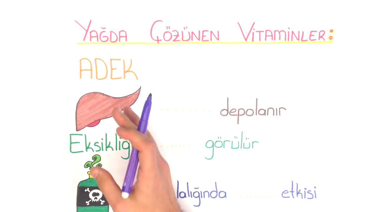 Vitaminler ve Hormonlar konusu Yağda Çözünen Vitaminler eğitimi